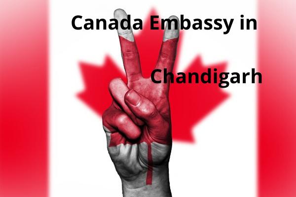 canada embassy in chandigarh